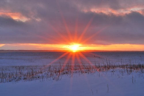 solstice1