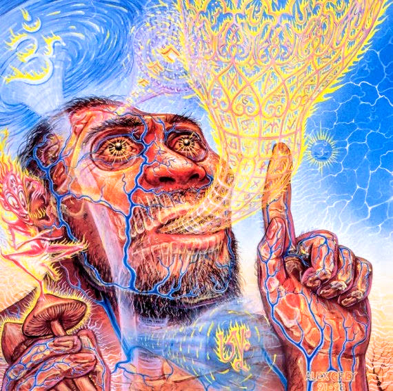 stoned ape theory psychedelics