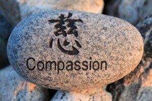 compassionrock